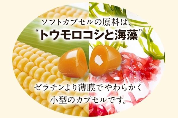 伝統にんにく卵黄+アマニが植物性カプセル