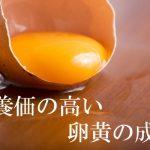 栄養価の高い卵黄の成分